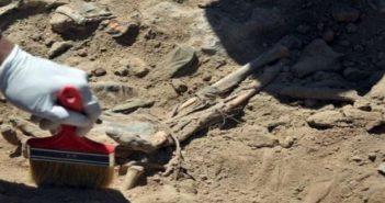 موالون ساخطون يكشفون حقيقة المقابر الجماعية في دوما إدعى النظام أنها لذويهم