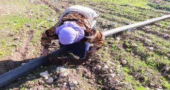 في مشهد مؤلم لأم سورية تحاول جمع أشلاء ابنها بعد مقتله بغارة للعدو الروسي (فيديو)